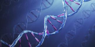 Jeśli nie wiadomo, o co chodzi, może chodzić o geny